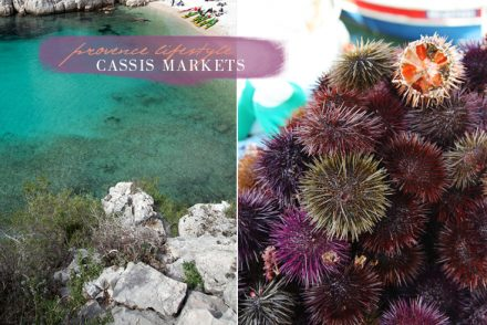 springmarkets-oursin-provence