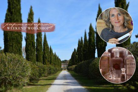 reflexology-workshop-aix-en-provence