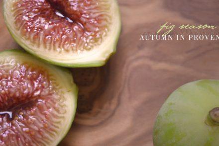 fig season provence