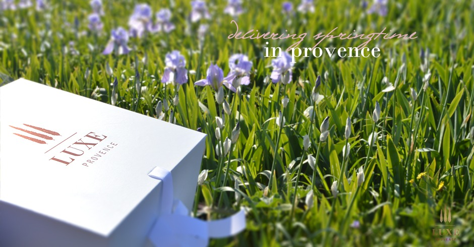 luxe provence celebrates spring iris blooms