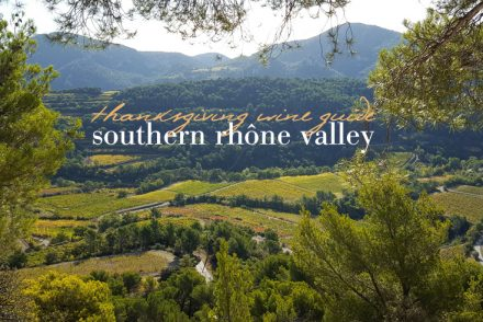 southern-rhone-valley-wine-guide