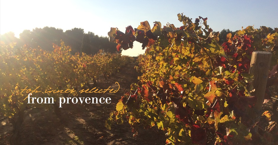 top-thanksgiving-wines-of-provence