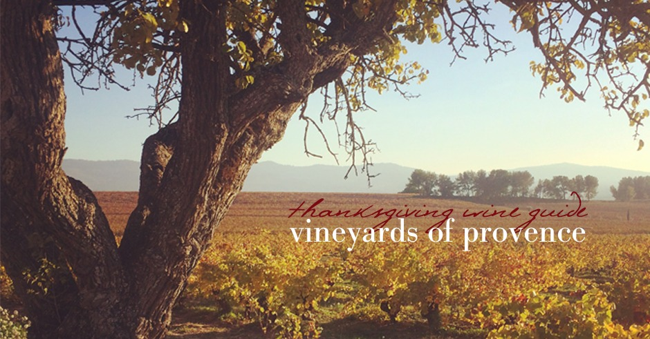 vineyards-of-provence-wine-guide-thanksgiving