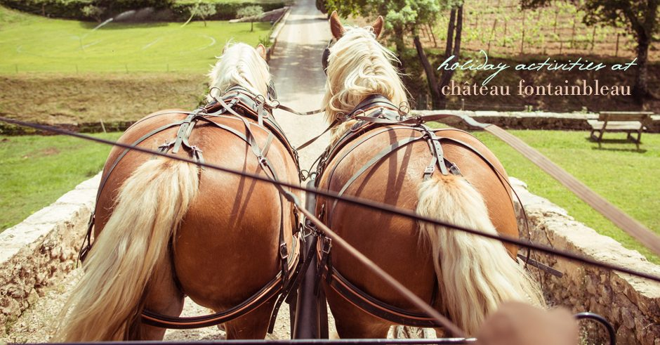 horse-carriage-rides-provence