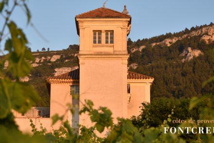 best provence rosé wine